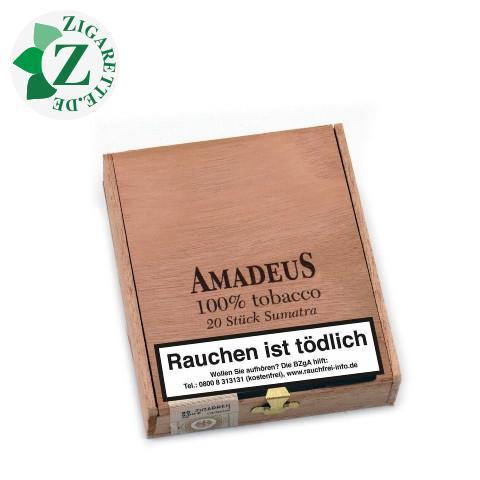 Amadeus Sumatra, 20er